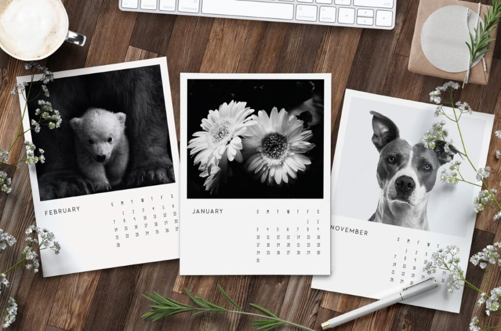 Free Printable 2021 Calendar Black and White Photography
