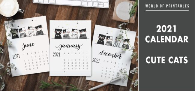 2021 Calendar Cute cats