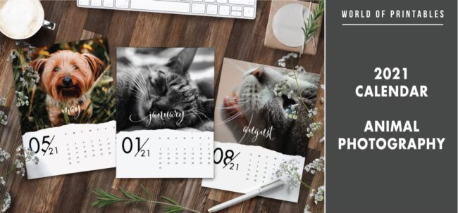 2021 calendar Animal photography