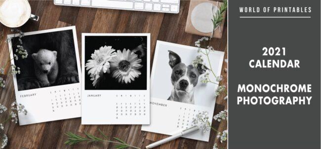 2021 calendar Monochrome photography