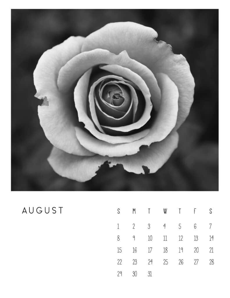 August 2021 Calendar Monochrome Photography