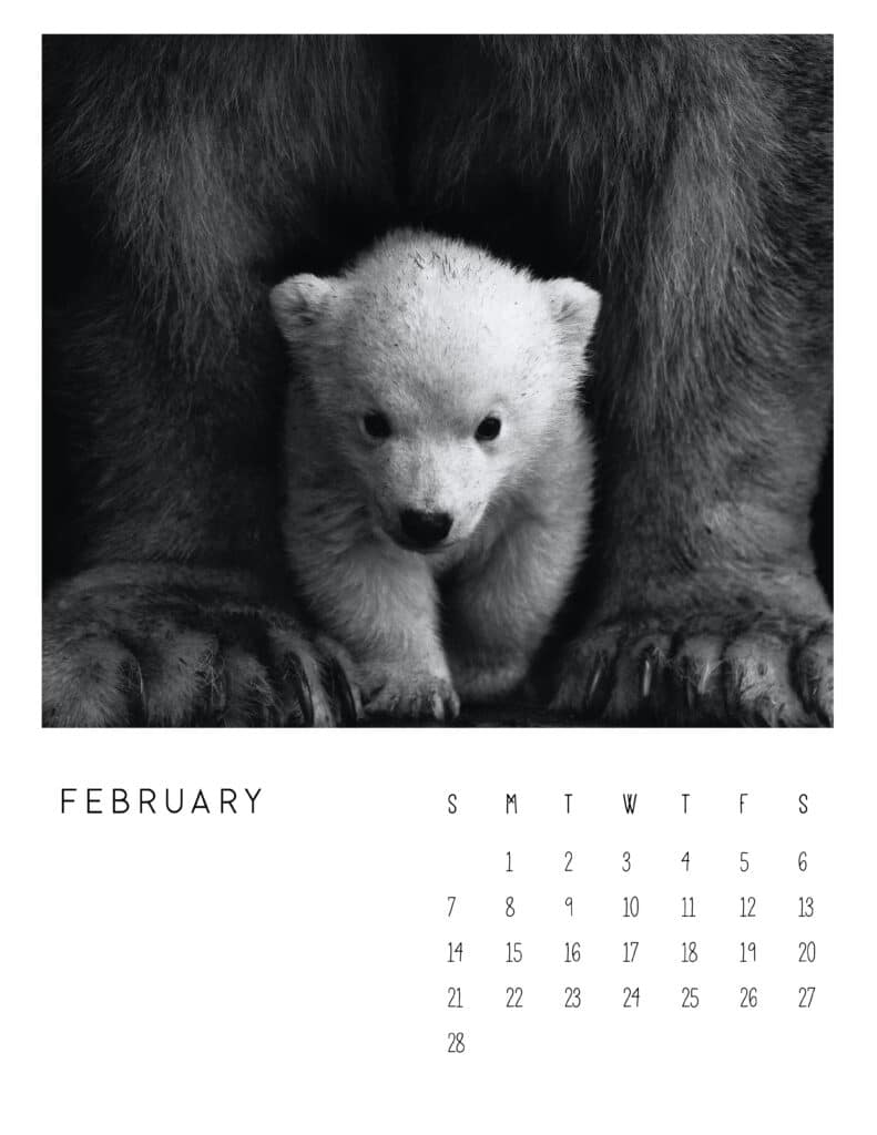 February 2021 Calendar Monochrome Photography