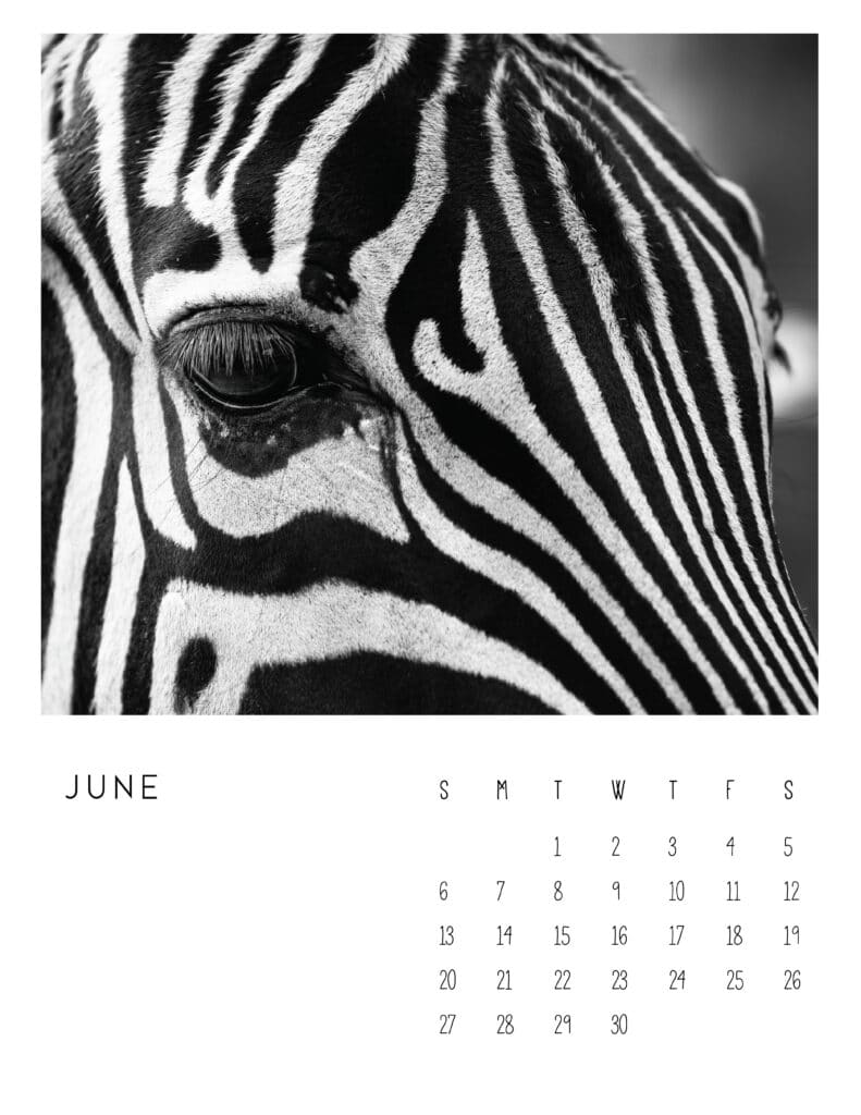 June 2021 Calendar Monochrome Photography