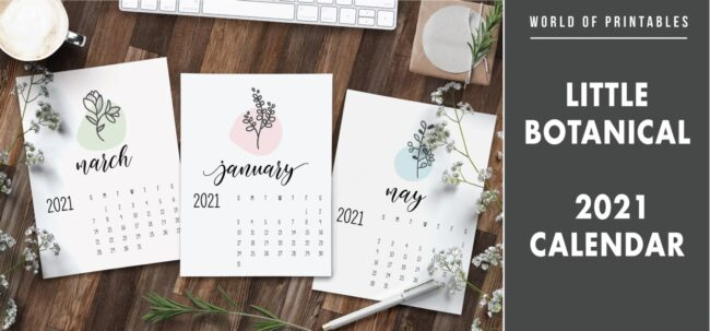 Little botanical 2021 calendar