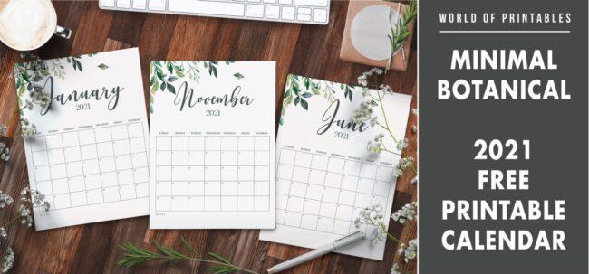 Minimal Botanical 2021 Free Printable Calendar