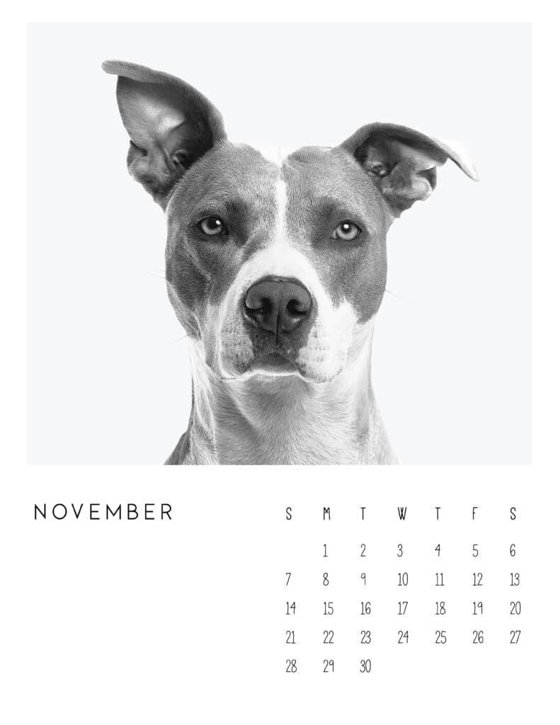 November 2021 Calendar Monochrome Photography