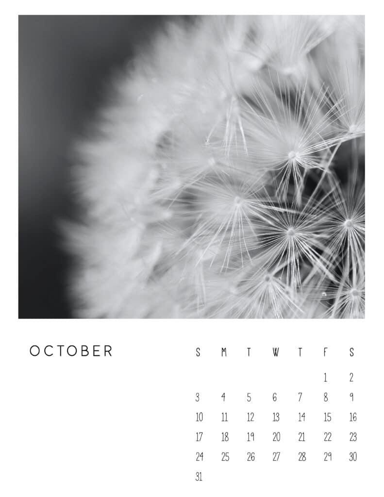 October 2021 Calendar Monochrome Photography