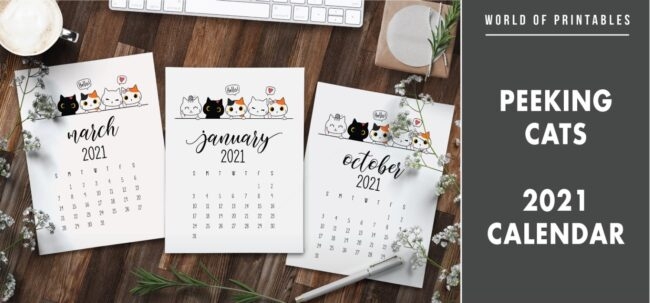 Peeking cats 2021 Calendar
