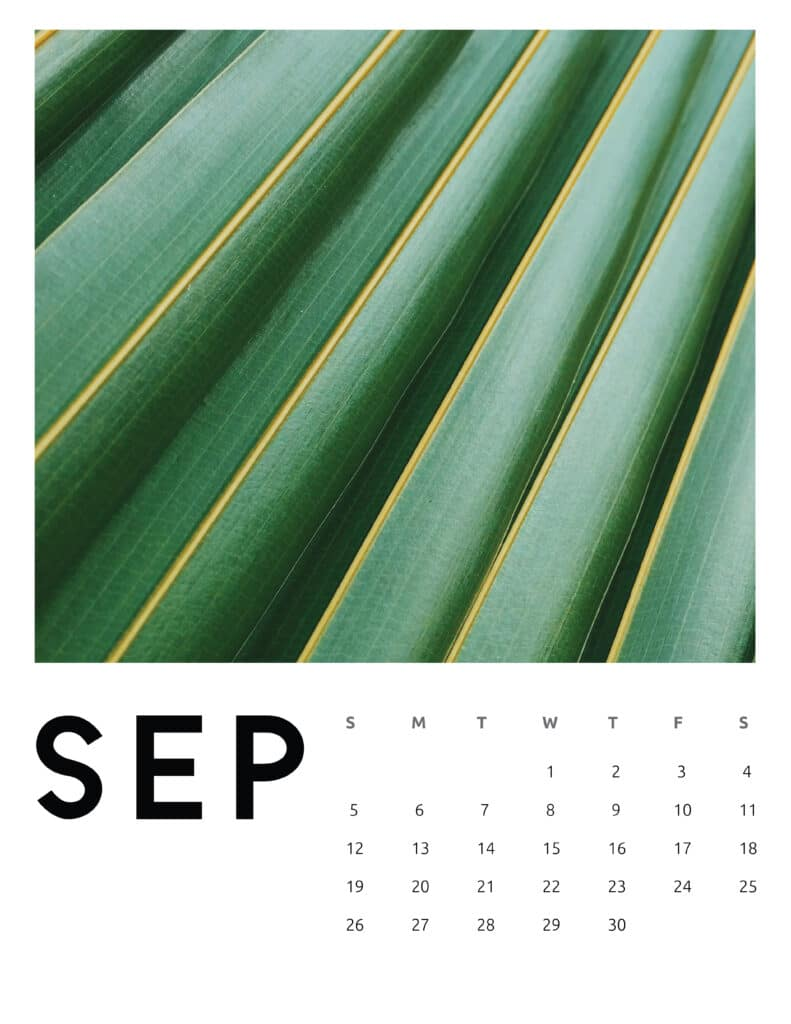 September 2021 Calendar Abstract Photography