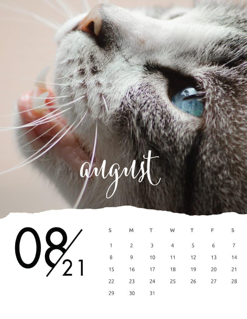 August 2021 Calendar Animal Photography