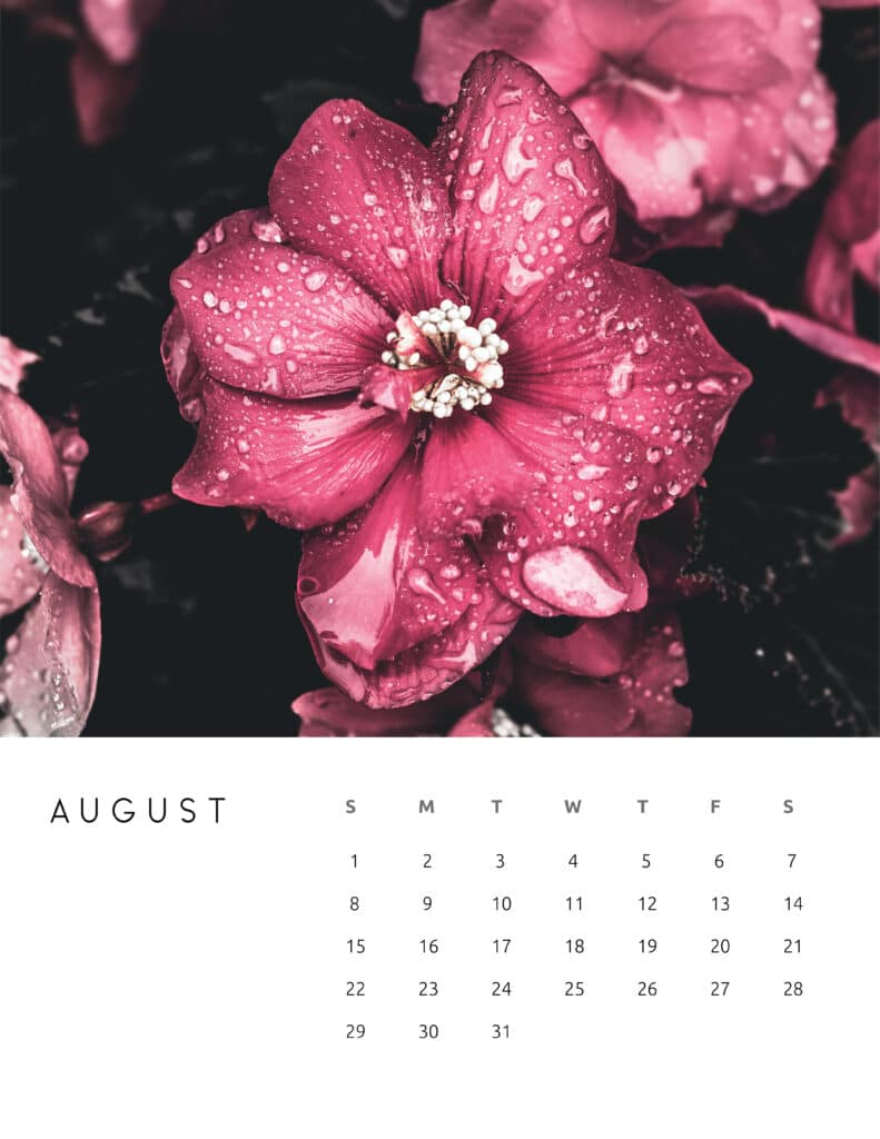 August 2021 Calendar Floral Photography