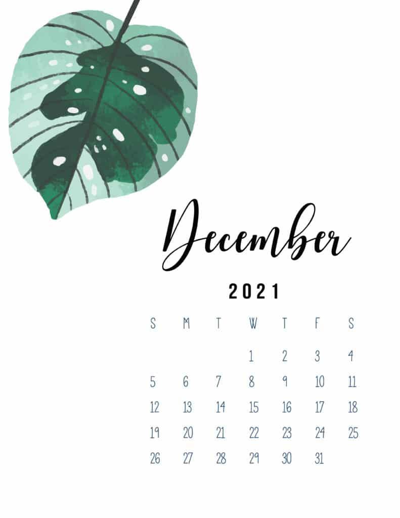 December 2021 Botanical Calendar