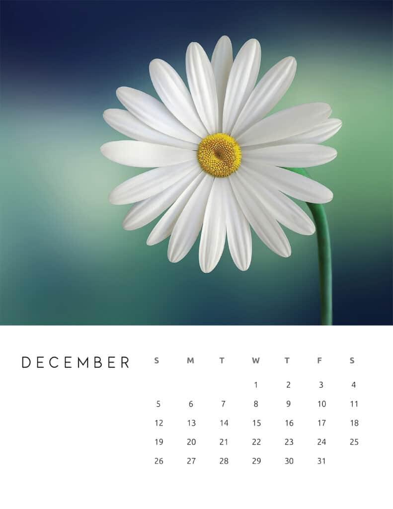 December 2021 Calendar Floral Photography
