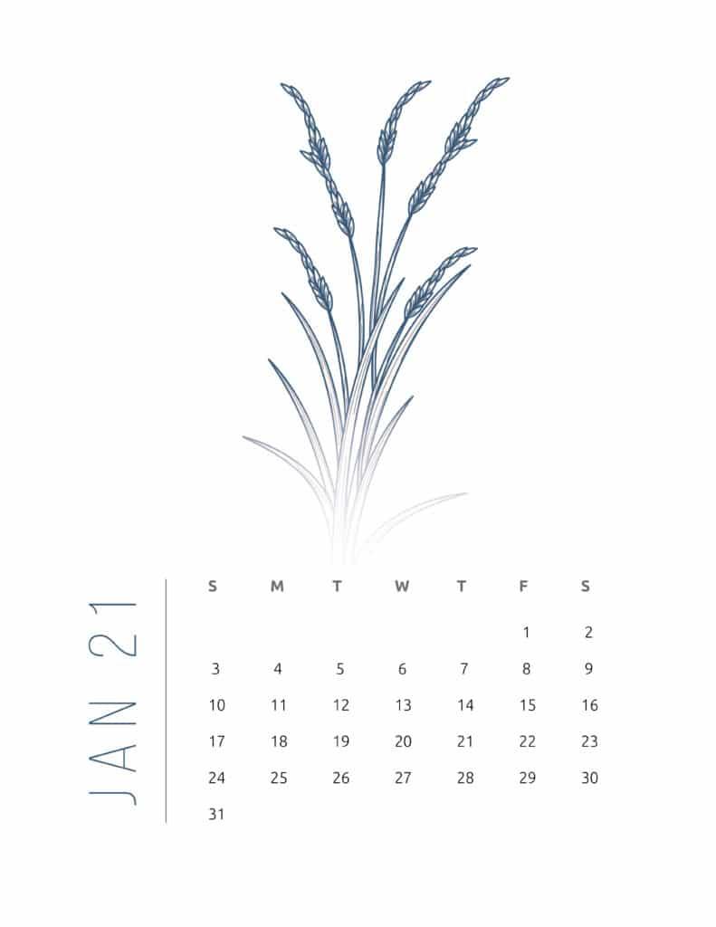 Floral Frame January 2021 Calendar