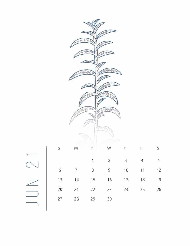 Floral Frame June 2021 Calendar