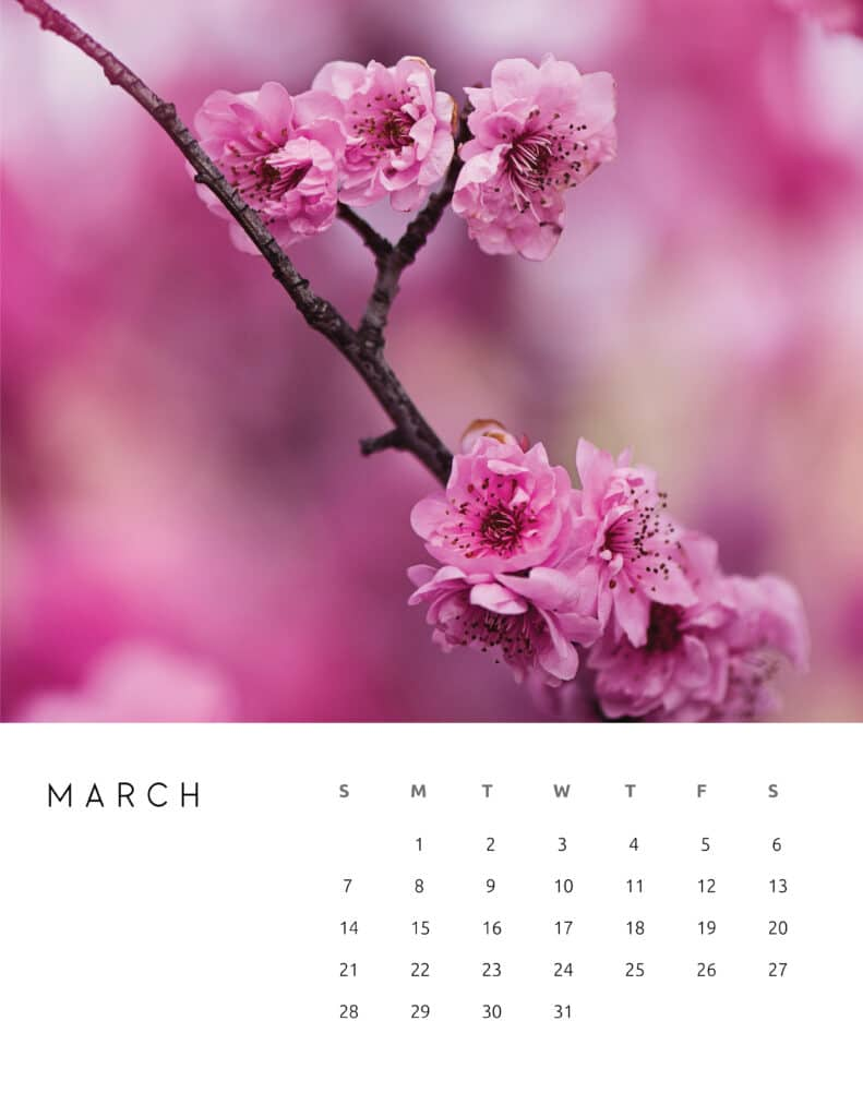 March 2021 Calendar Floral Photography