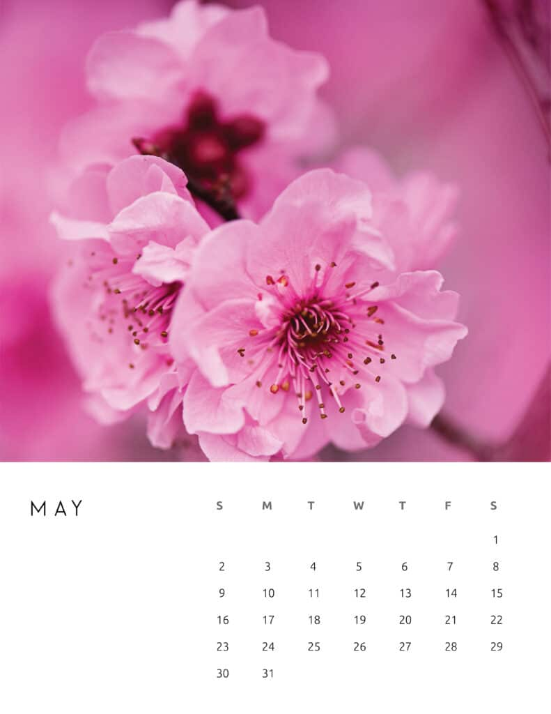 May 2021 Calendar Floral Photography