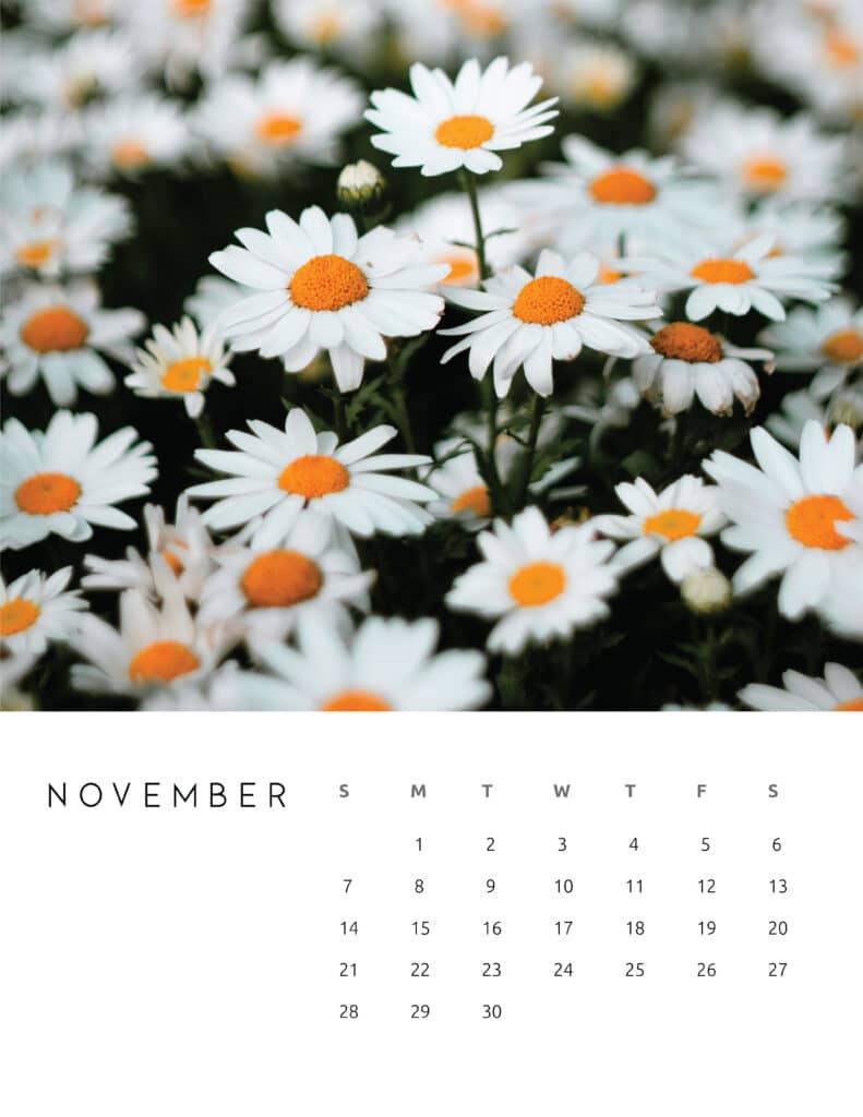 November 2021 Calendar Floral Photography