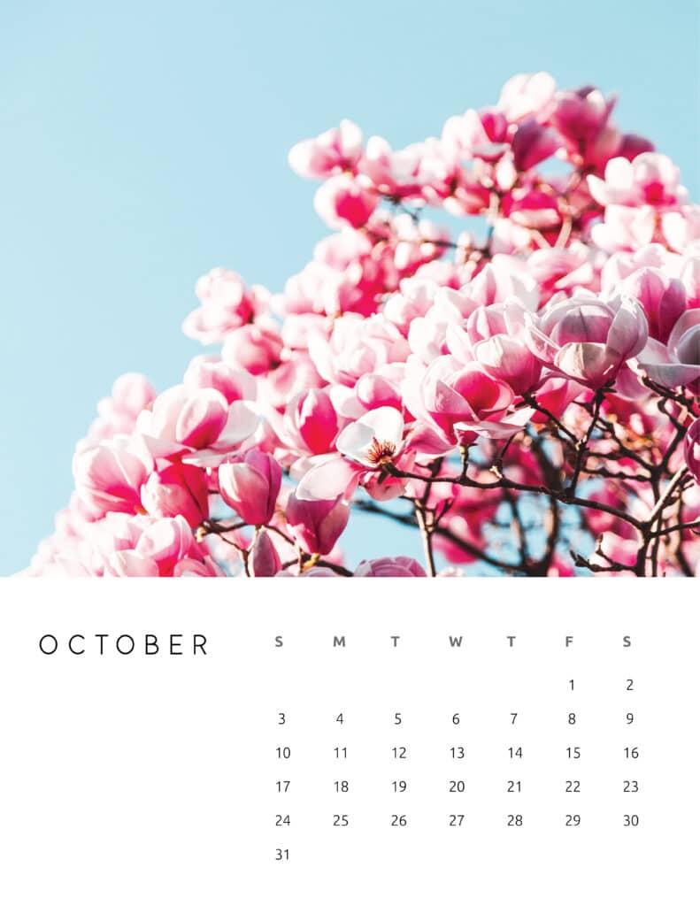 October 2021 Calendar Floral Photography