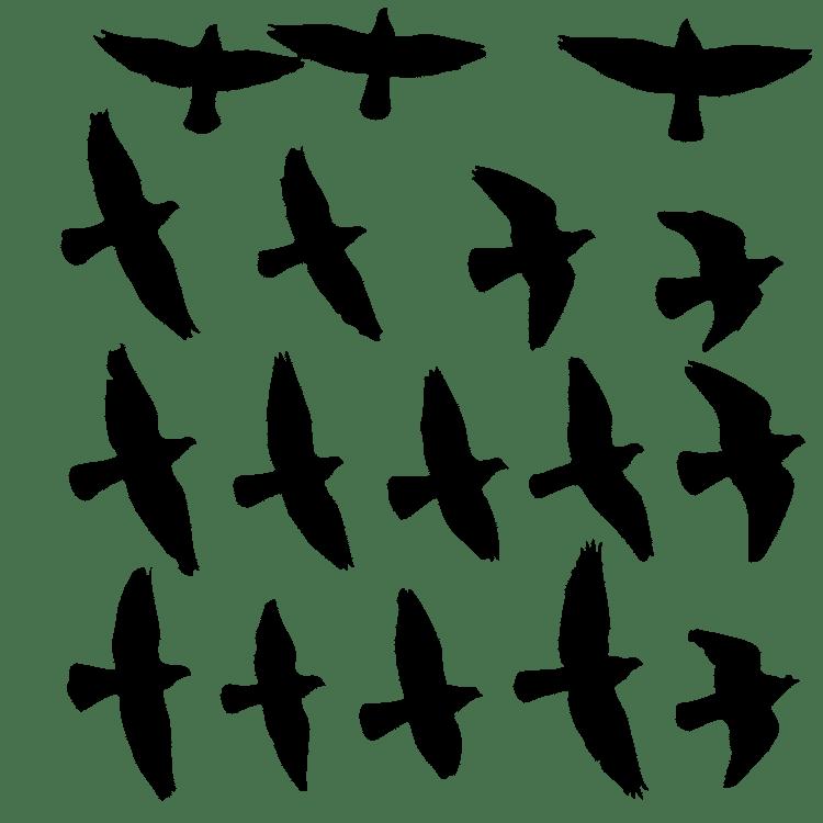 Flock of birds - Free SVG