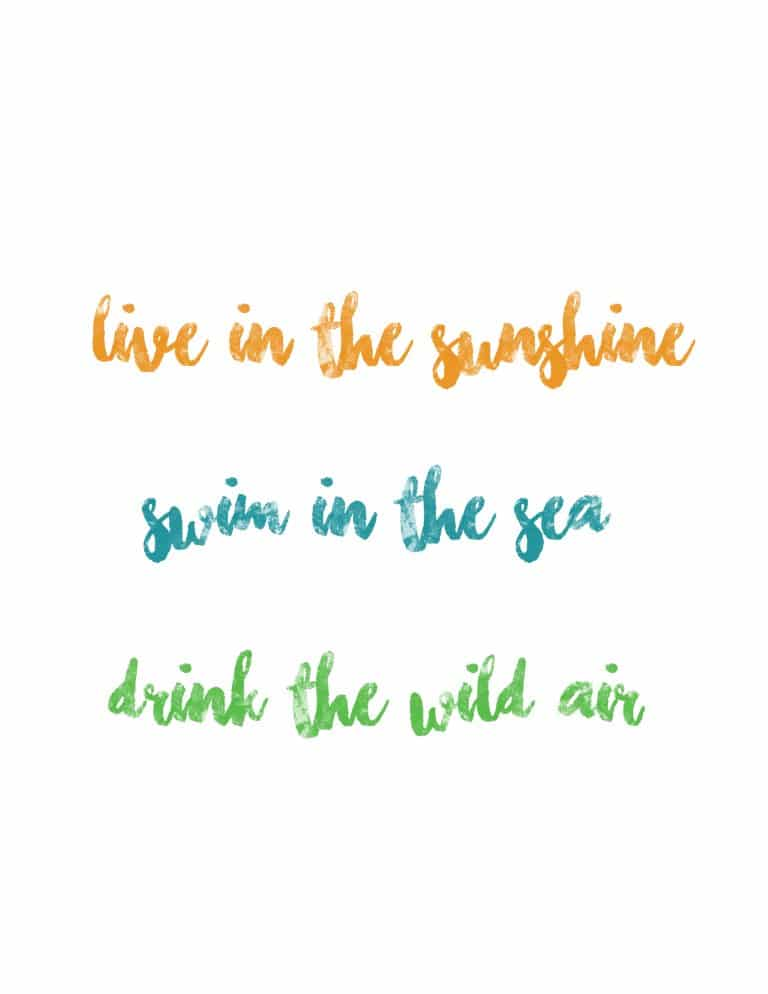 Live In The Sunshine Swim In The Sea Drink The Wild Air Art Print - Free Printable Wall Art