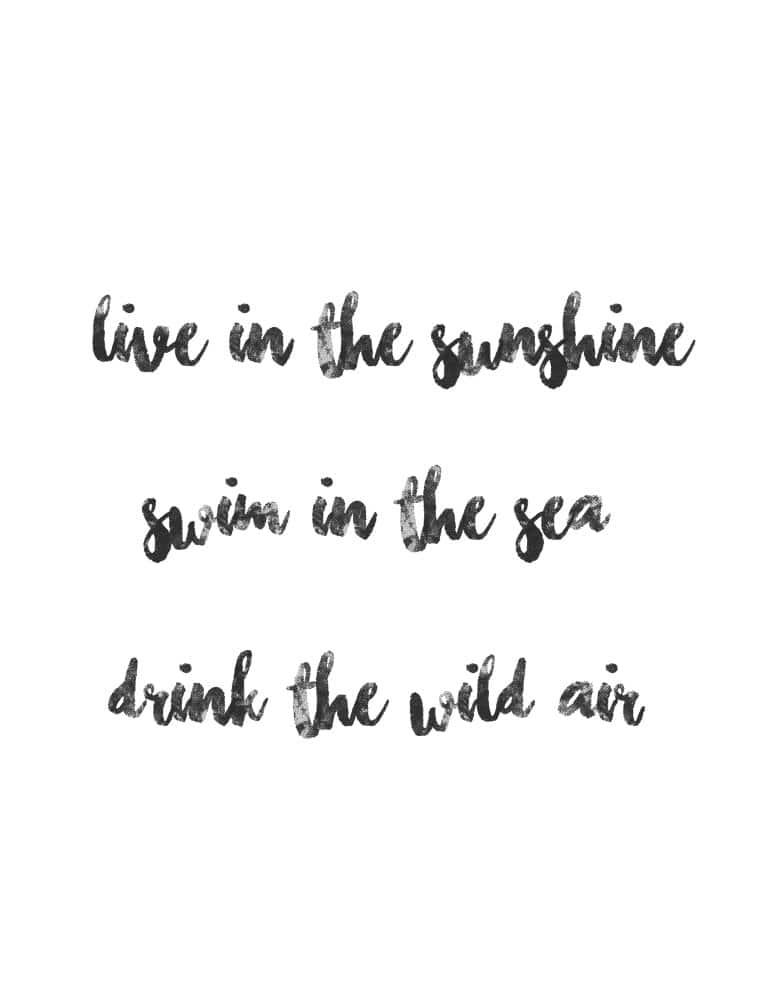 Live In The Sunshine Art Print - Free Printable Wall Art