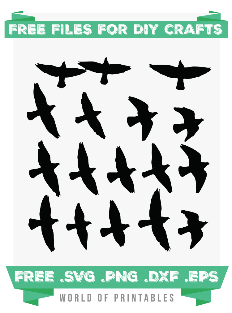 flock of birds Free SVG Files PNG DXF EPS