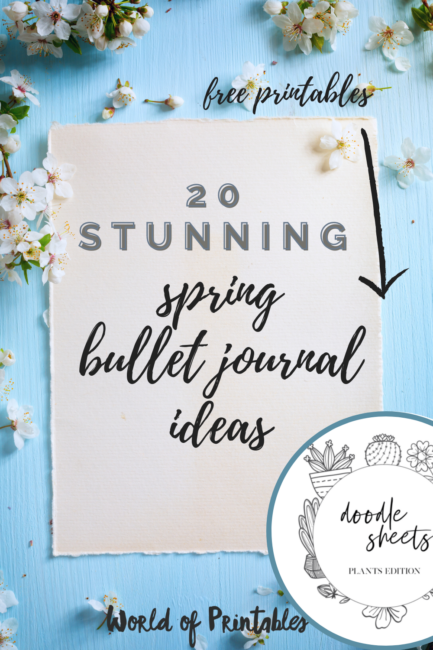 20 Stunning Spring bullet journal ideas + free printables
