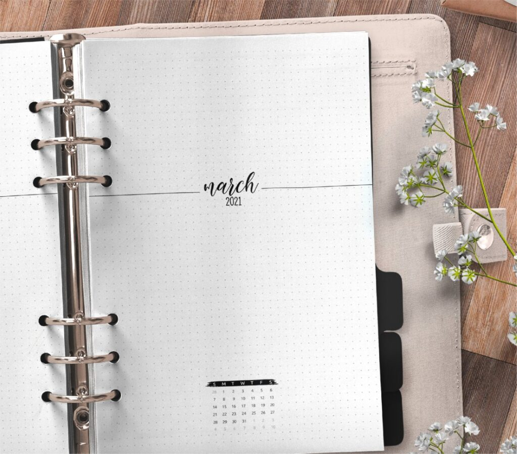 Free Month At A Glance Planner Insert 2