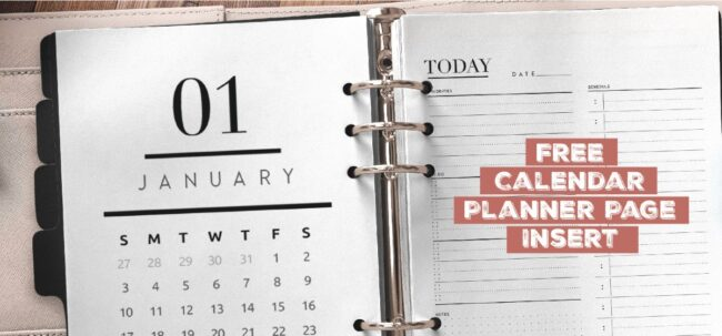 Free Printable Calendar Planner Page Insert