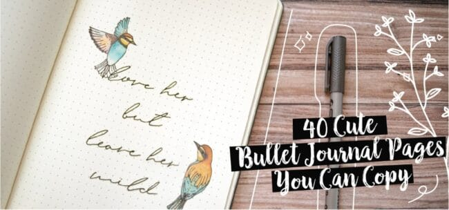 40 cute bullet journal pages you can copy