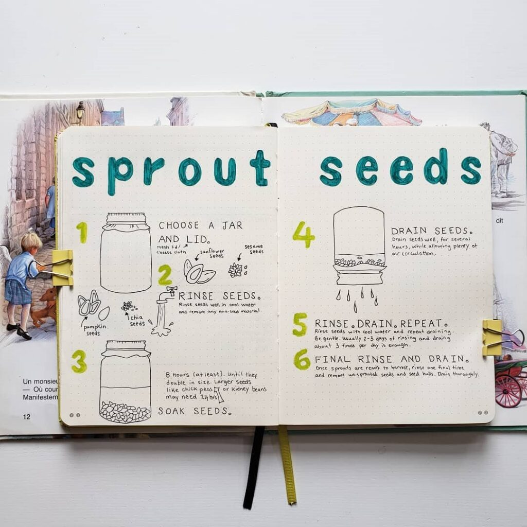 Cute Sprout Seeds Bullet Journal Idea