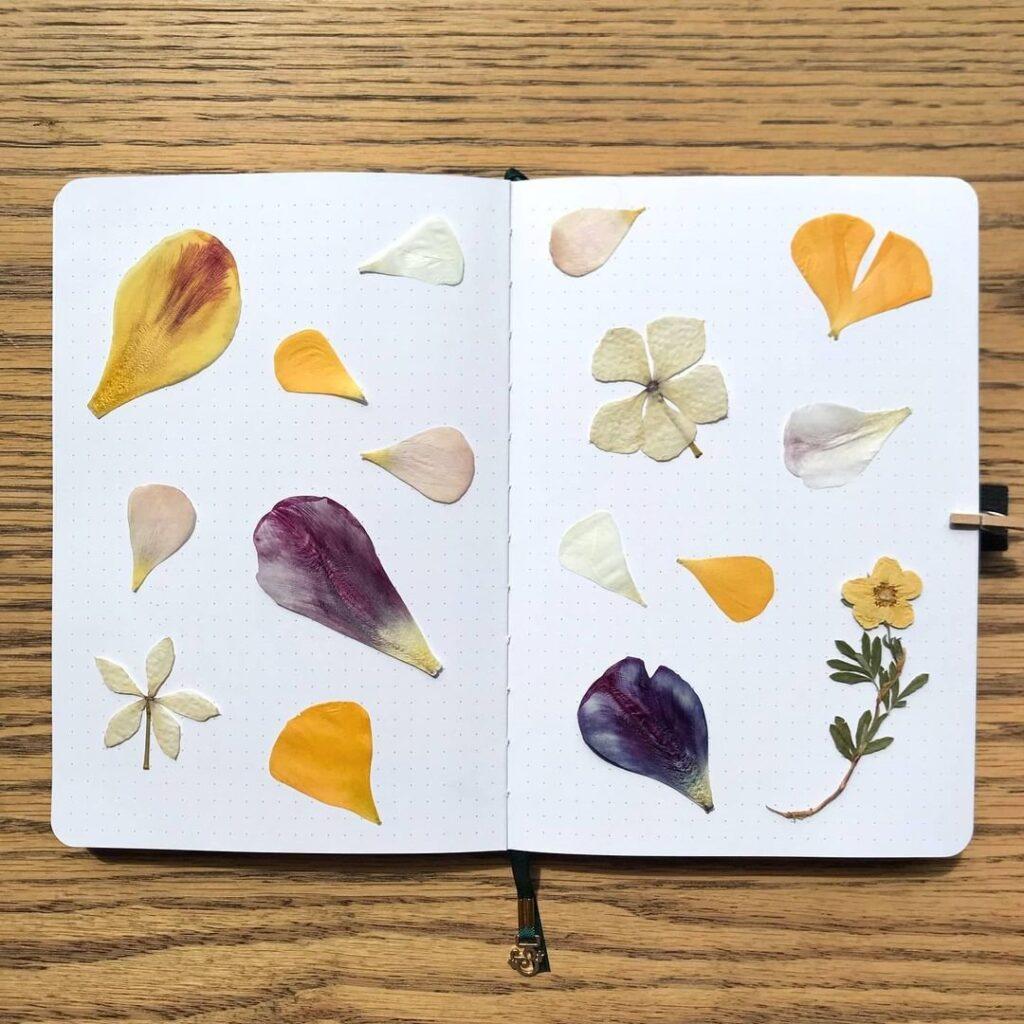 Dried Flowers Bullet Journal Spread Idea