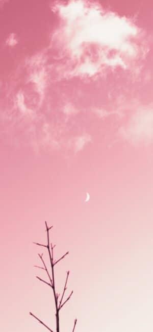 Moon Pink Aesthetic Wallpaper