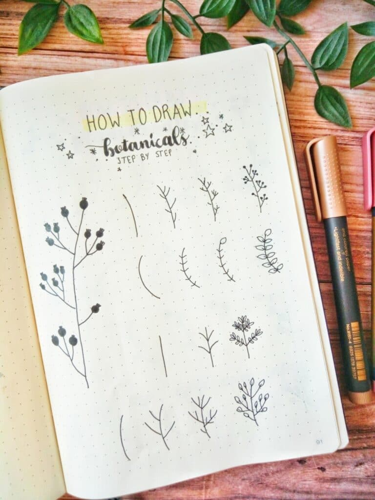 how to draw botanicals