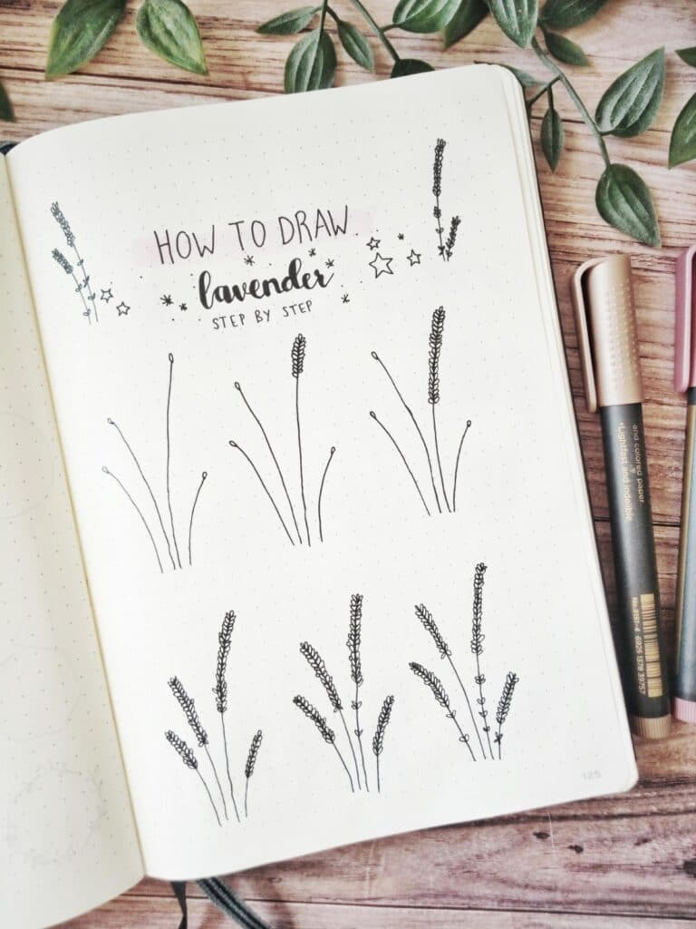how to draw lavender step by step