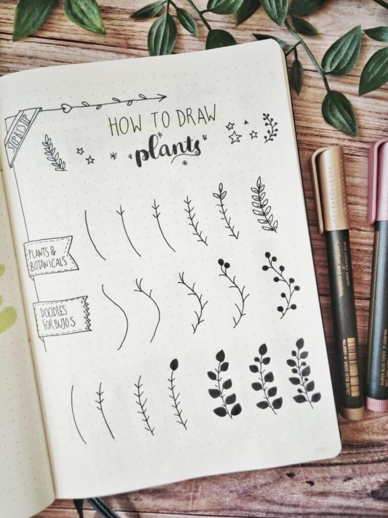 how to draw plants step by step