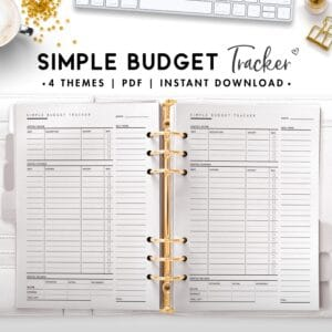 simple budget tracker - classic