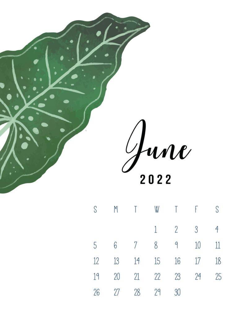 2022 calendar June printable pdf