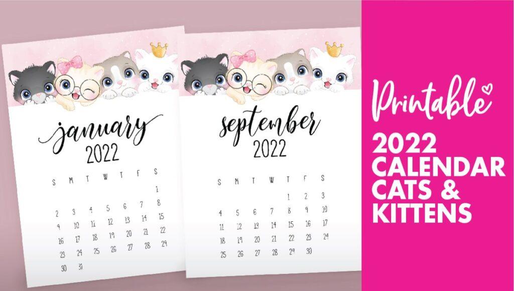 2022 cat calendar
