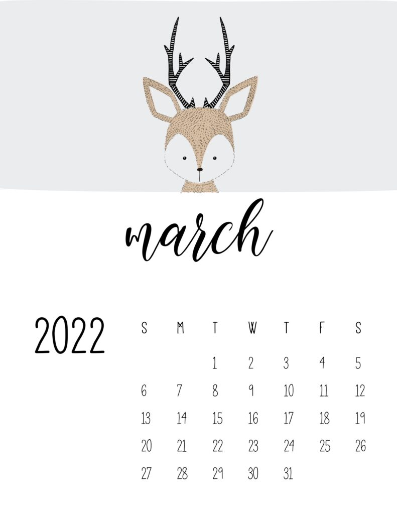 animal calendars 2022 - march