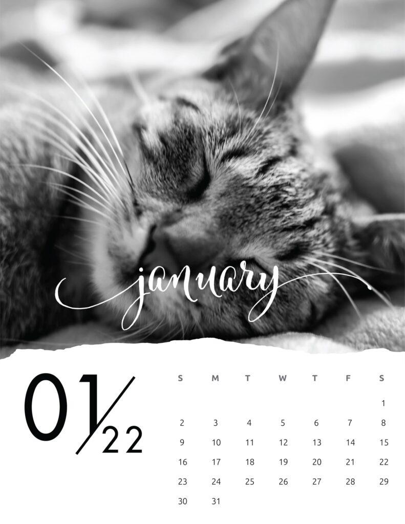 family calendar 2022 - january