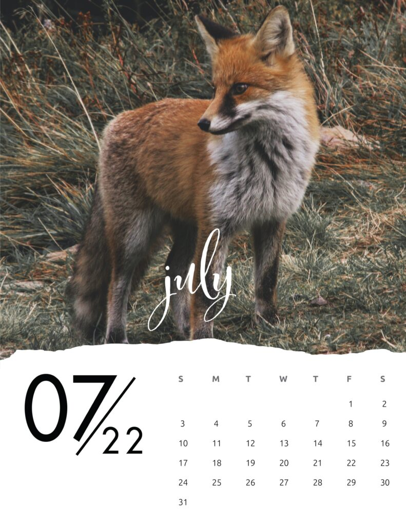family calendar 2022 - july