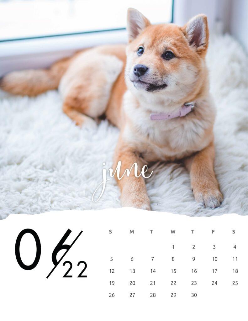 family calendar 2022 - june