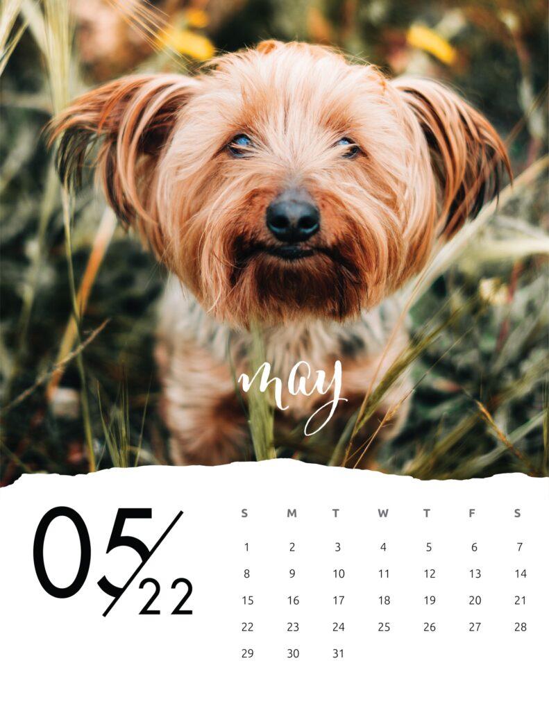 family calendar 2022 - may