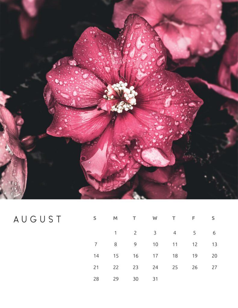 nature photography calendar 2022 - august