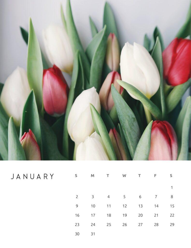 nature photography calendar 2022 - january