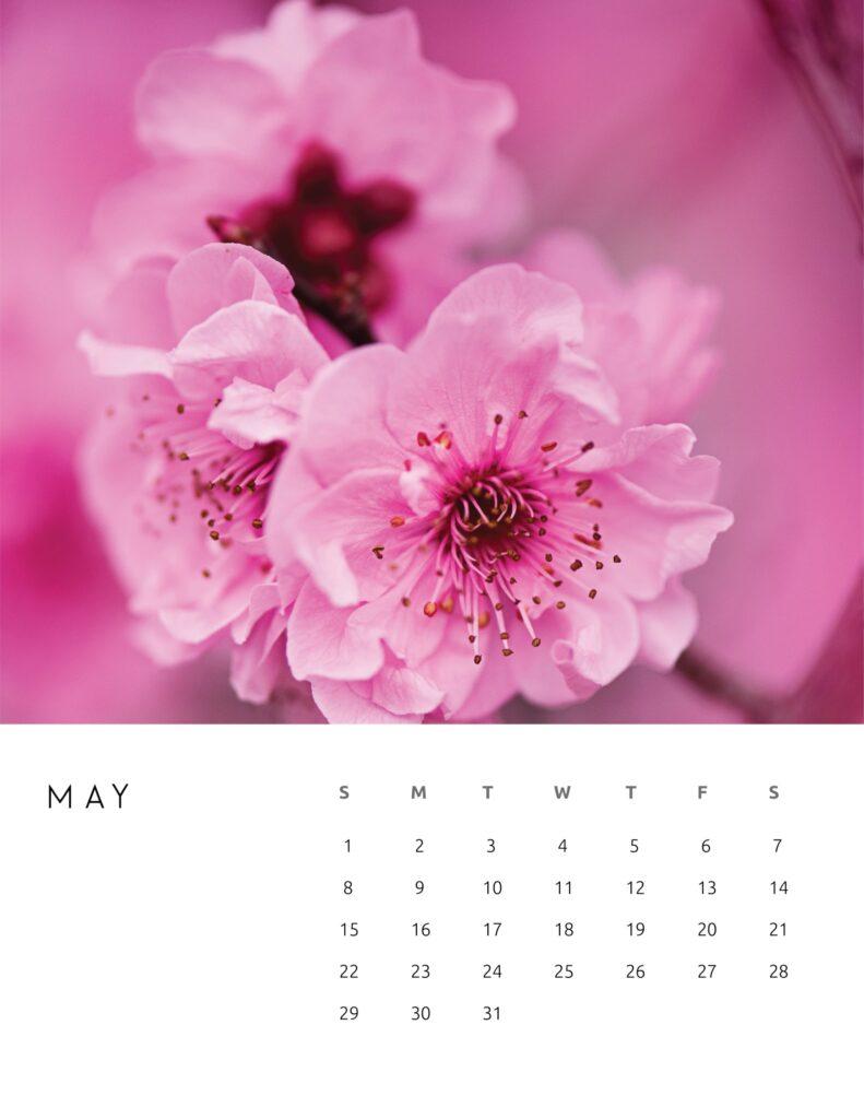 nature photography calendar 2022 - may