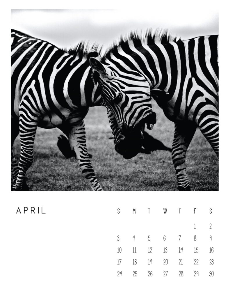 photo calendar 2022 - april
