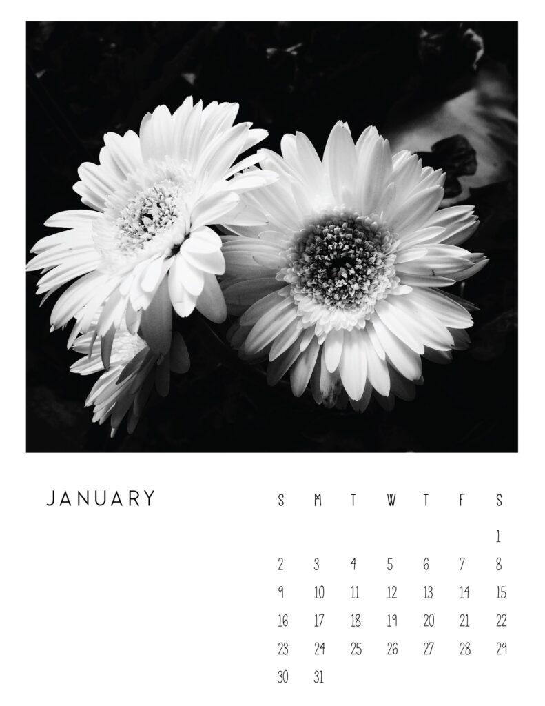 photo calendar 2022 - january